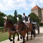 Séjour romantique en Bourgogne - balade en calèche